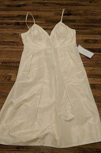JCrew Adrienne Dress (10)